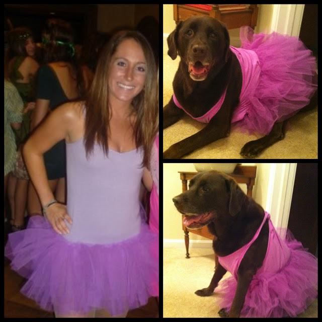 I'm a crazy dog lady