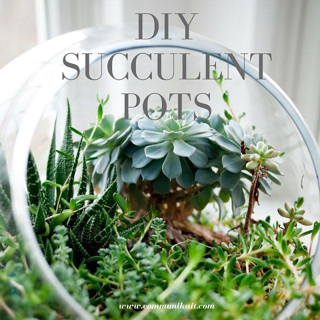 DIY: Simple Succulent Pots