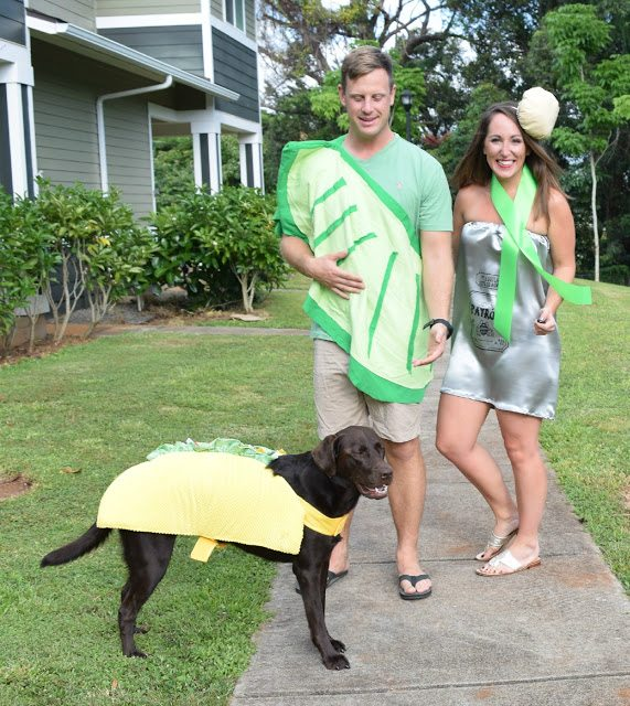 diy tequila shot costume and taco dog diy halloween costume easy
