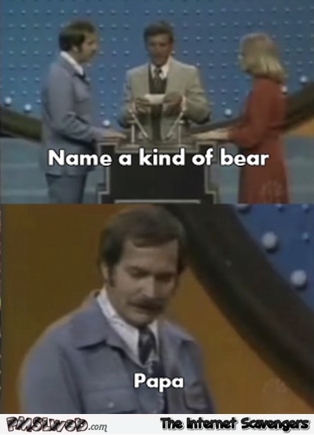Name A Type Of Bear Meme
