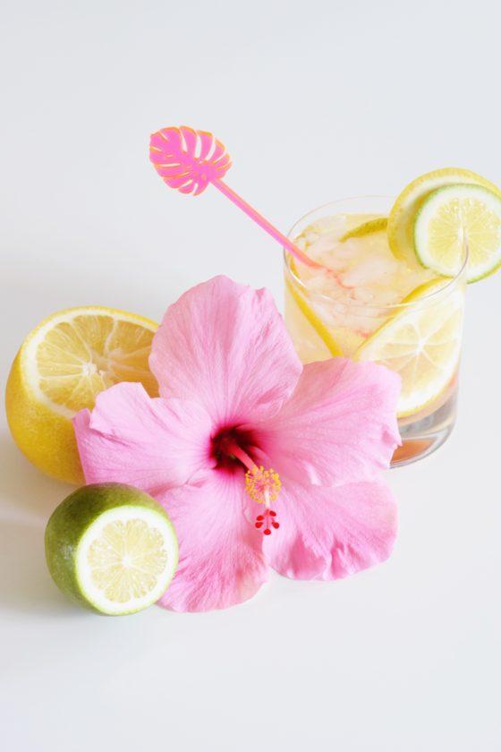 Spiked Hibiscus Lemonade - Summer Cocktail - Communikait