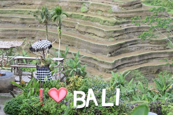 Our Trip To Bali At A Glance - Bali, Indonesia - Travel - Communikait