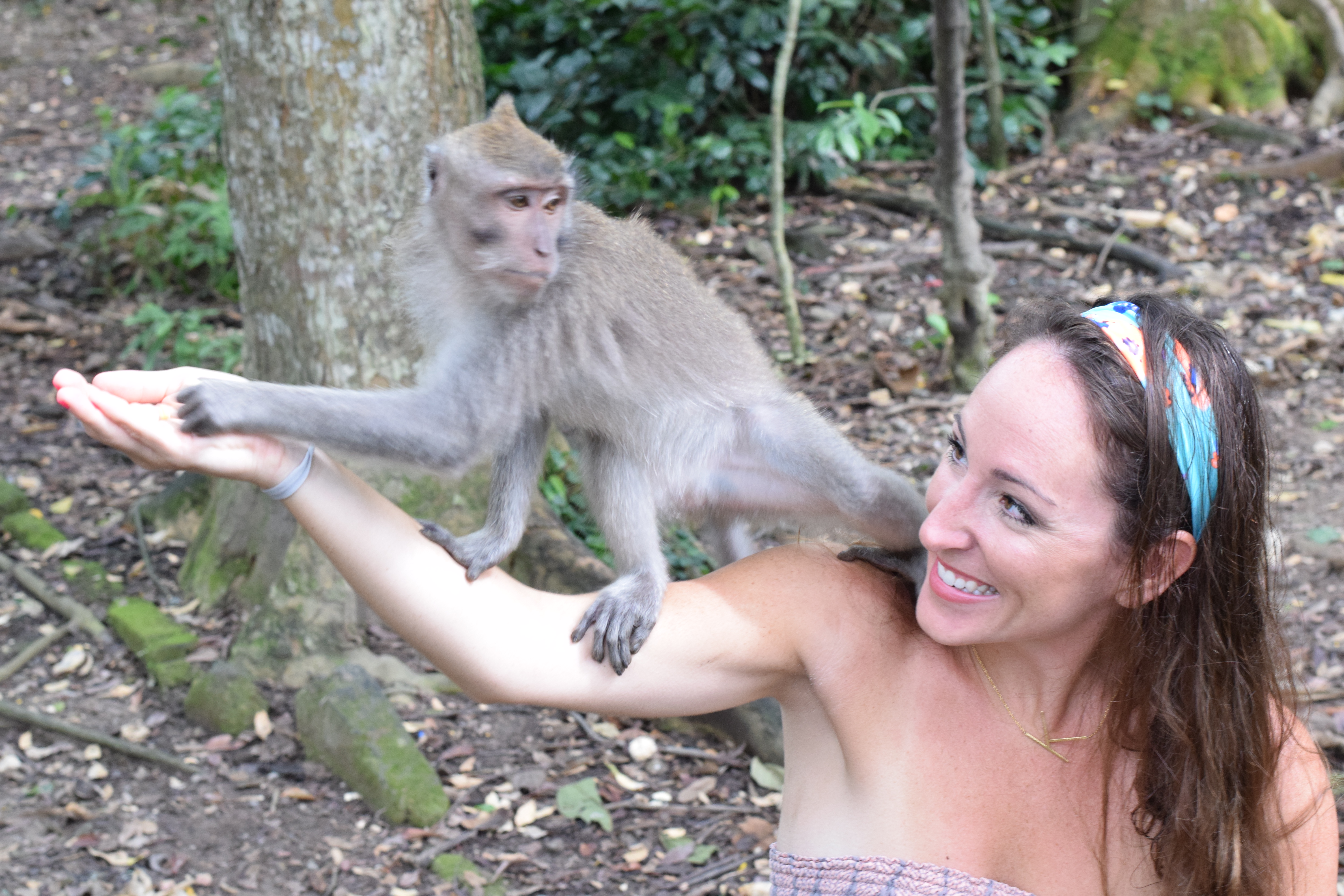Monkey Sanctuary + Forest Ubud, Bali, Indonesia - Our Bali Trip - Communikait