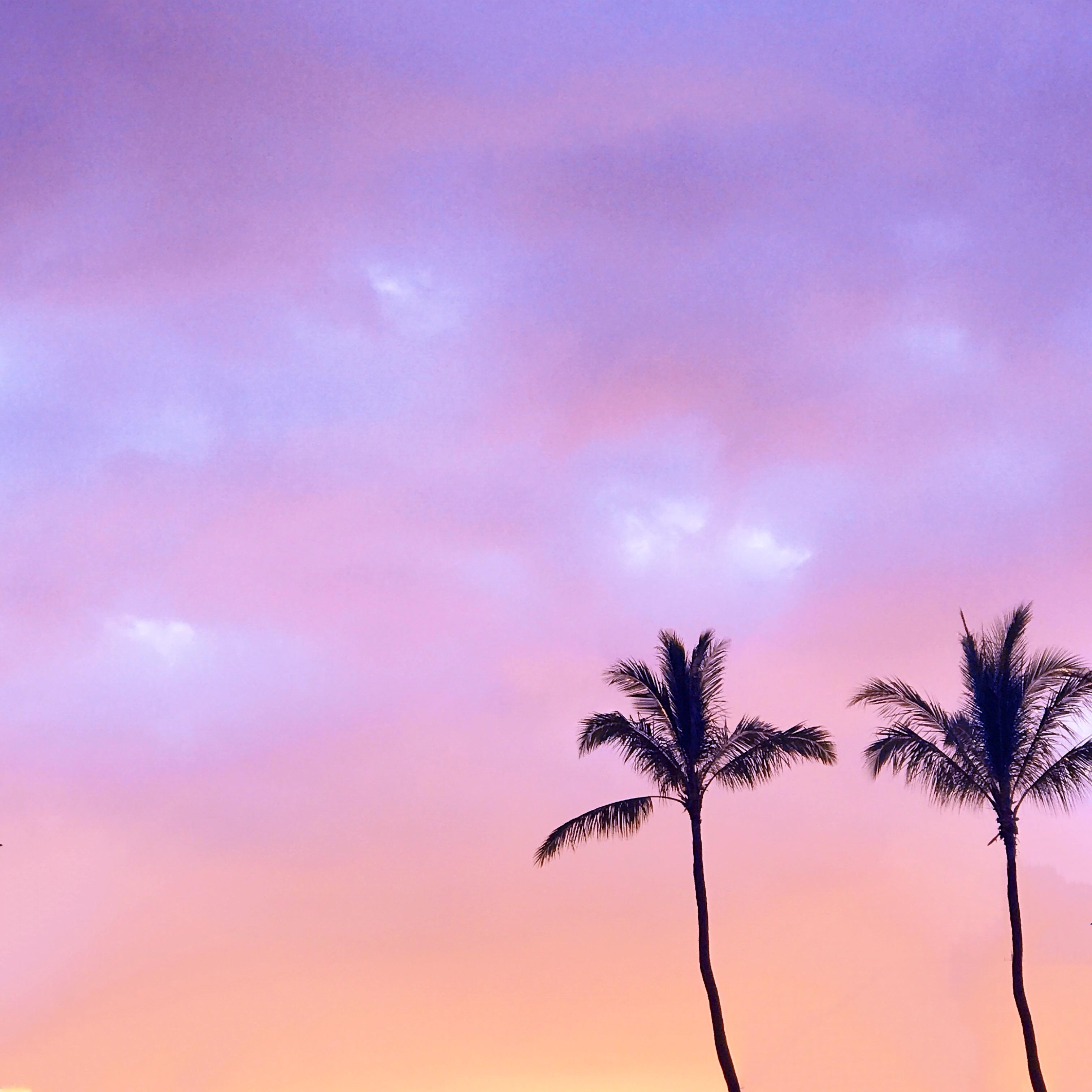 Hawaii Sunset - 5 on Friday - Communikait by Kait Hanson