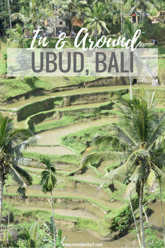All Around Ubud - Ubud, Bali, Indonesia - Our Bali Trip - Communikait