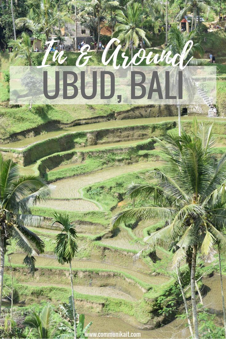 Our Bali Trip: Ubud