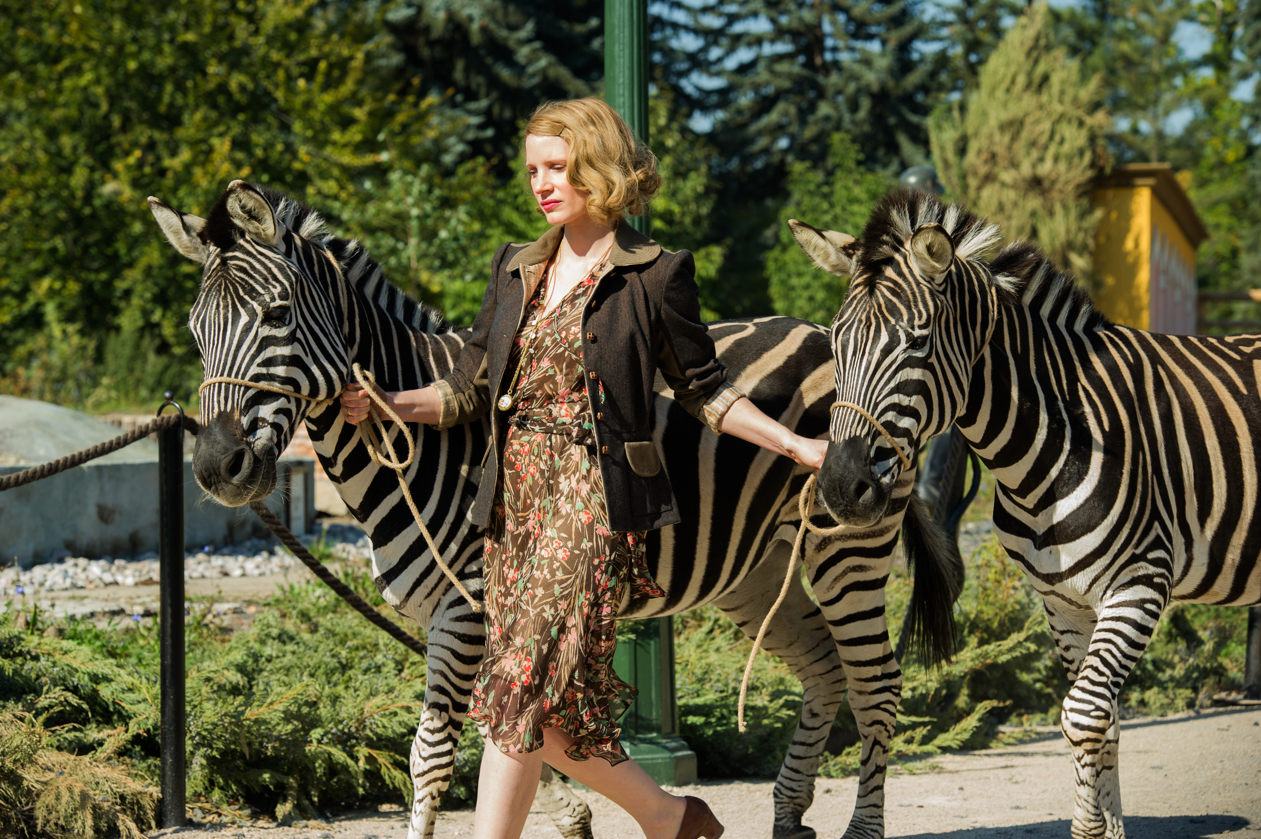THE ZOOKEEPER'S WIFE - My Favorite Historical Movies - Communikait