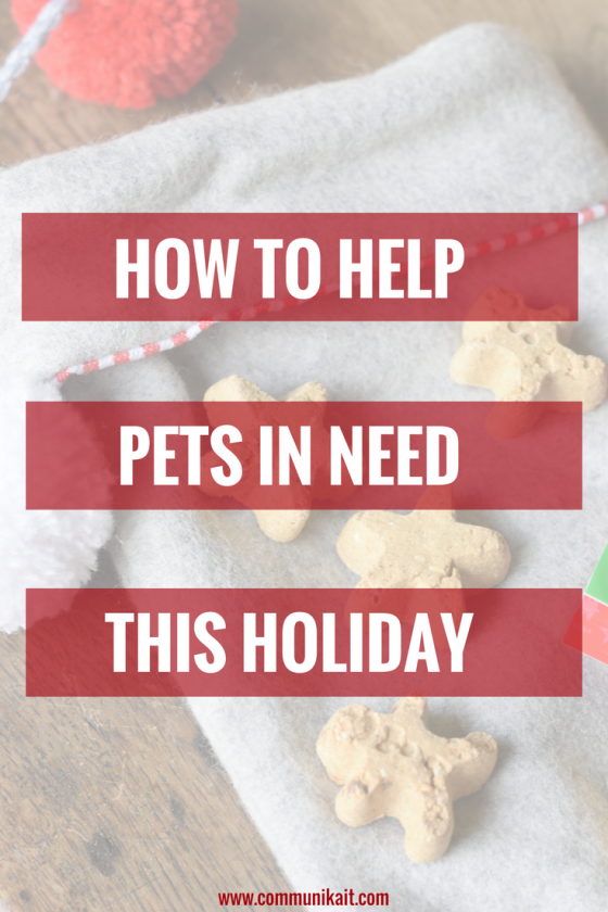 How To Help Pets In Need This Holiday - Christmas Pet - Christmas Dog Ideas - Holiday Pet Ideas - Communikait by Kait Hanson