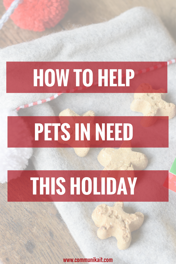 How To Help Pets In Need This Holiday
