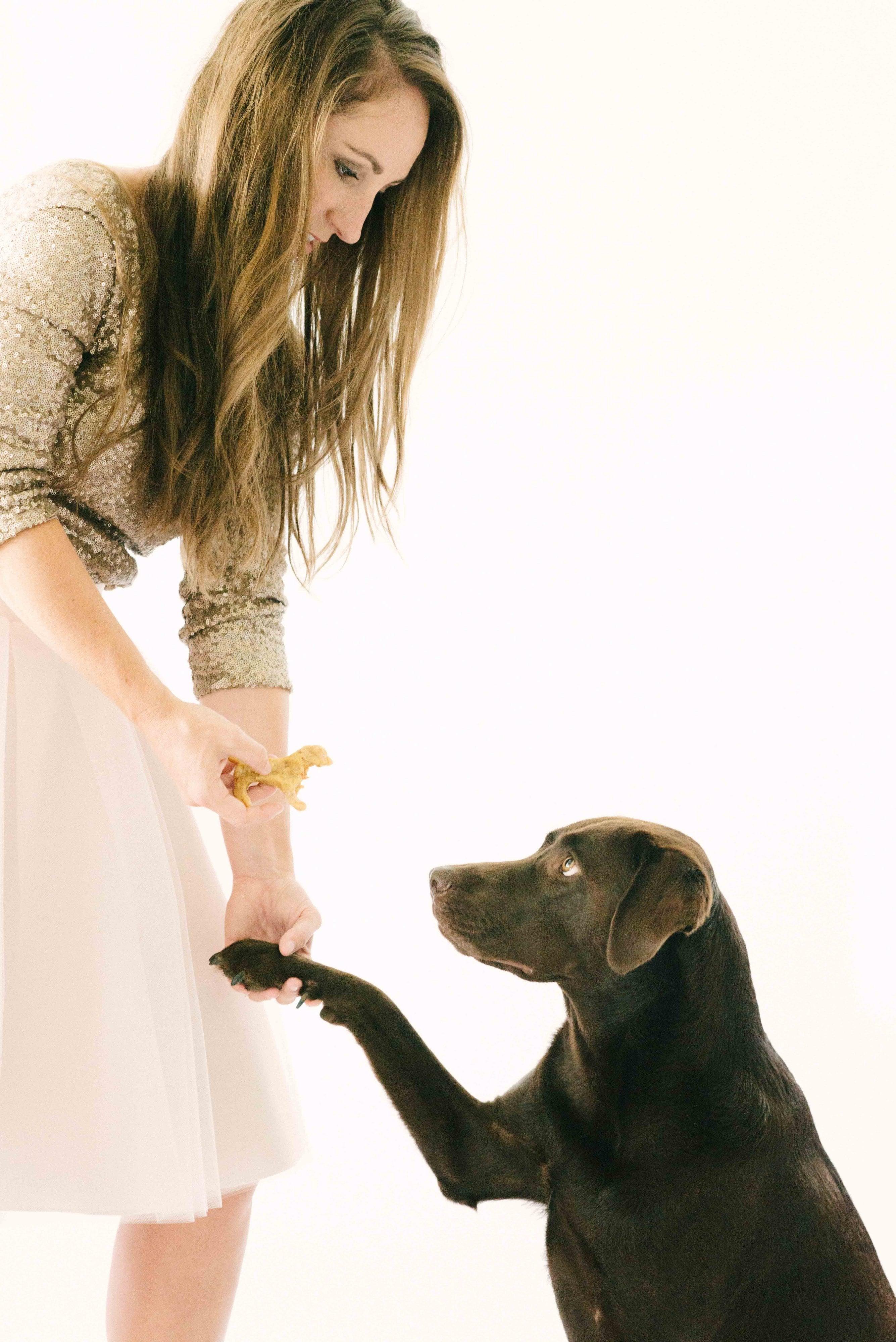 4-Ingredient Dog Treats - Easy Dog Treats - Peanut Butter Dog Treats - Chocolate Labrador Dog Treats - Simple Dog Treats - Homemade Dog Treats - #pets #DIY