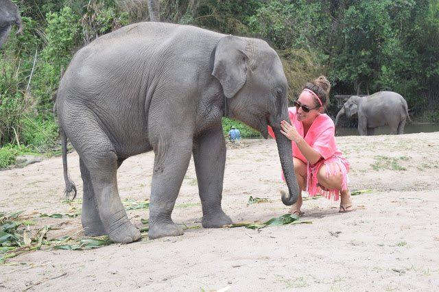 Our Day At Patara Elephant Farm In Chiang Mai Thailand - Patara Elephant Farm Thailand - Humane Elephant Camp Thailand - Chiang Mai Thailand Elephants - Elephant Keeper For A Day - Elephant Day Care Thailand - Patara Elephant Farm Review - Thailand Itinerary - Chiang Mai Thailand