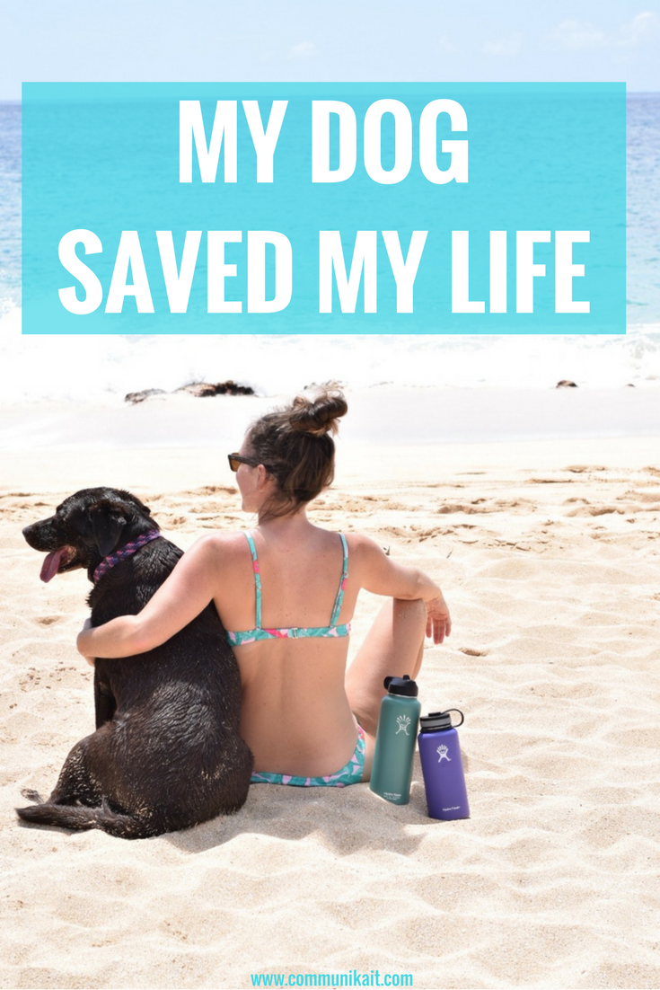 My Dog Saved My Life - Communikait by Kait Hanson