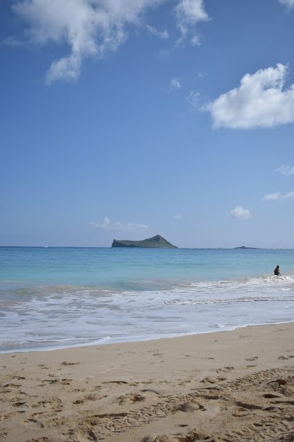 A Dog Day On Waimanalo Beach