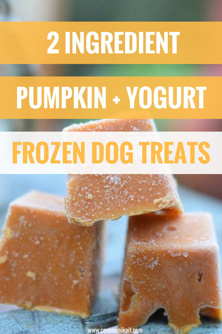 2-Ingredient Frozen Pumpkin + Yogurt Dog Treats - Easy Dog Treats Recipe - Dog Treat Recipe - Healthy Dog Treat Recipe - Pet Tips - Communikait by Kait Hanson