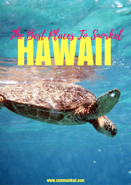 3 Best Places To Snorkel On Big Island Hawaii - Best Snorkeling Hawaii - Big Island Snorkeling - Good Snorkeling in Hawaii - Snorkeling Big Island - Snorkeling Hawaii - Best Snorkeling Big Island - Best Snorkeling Hawaii - #hawaii #bigisland #travelblog