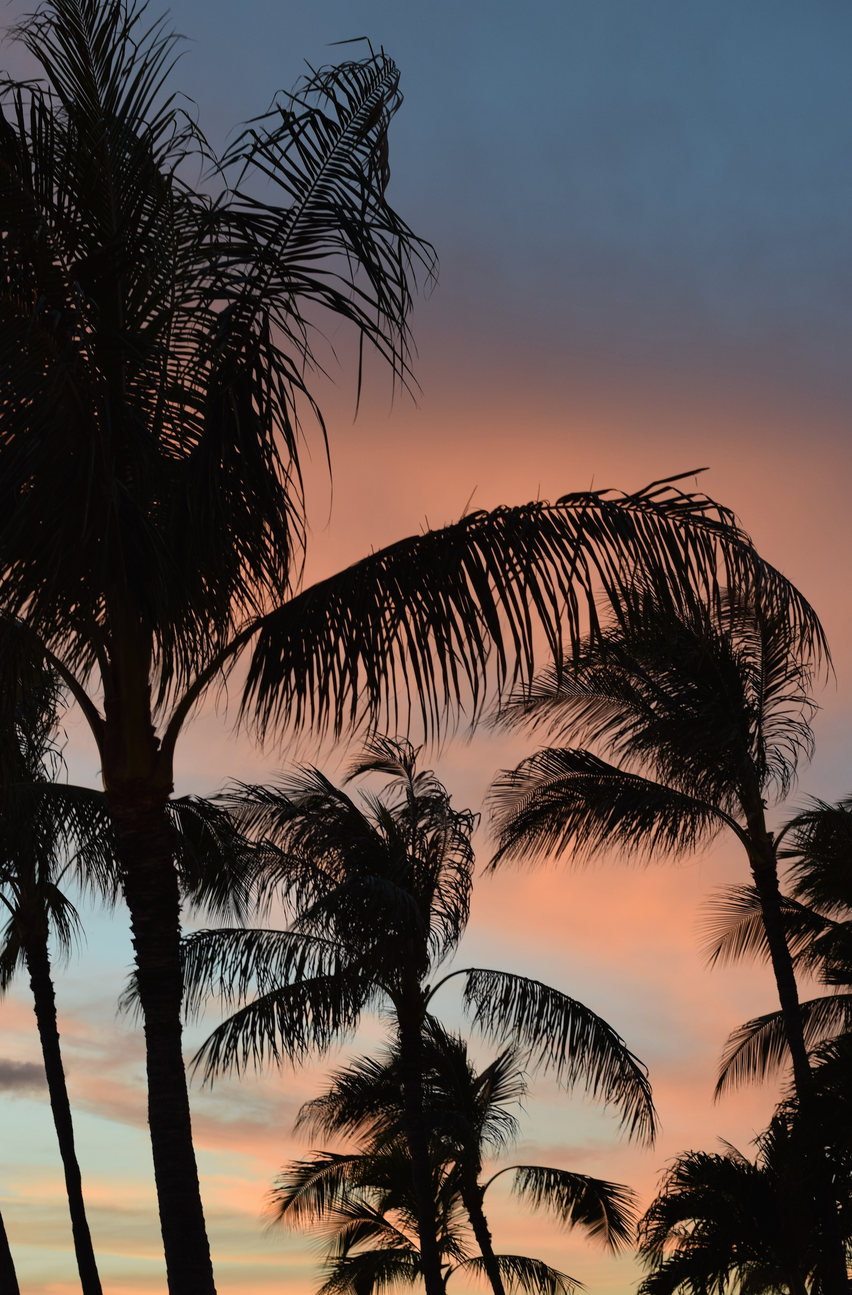 5 Amazing Places To Watch The Sunset Oahu