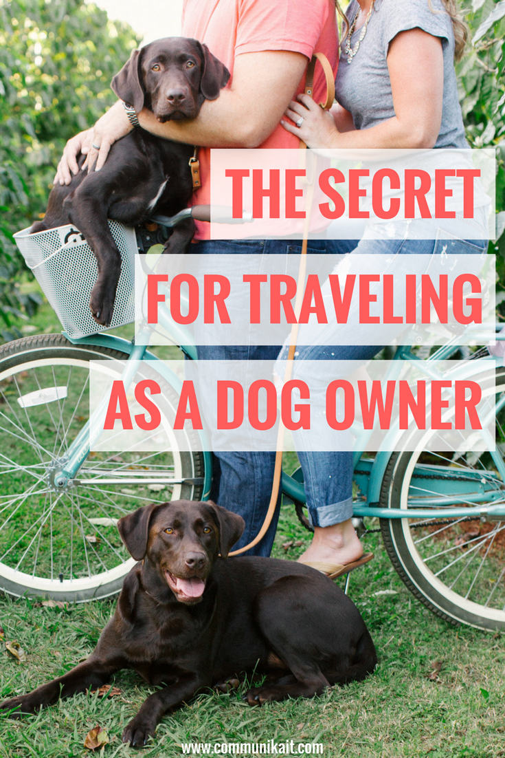 What Do You Do With The Dogs When You Travel?