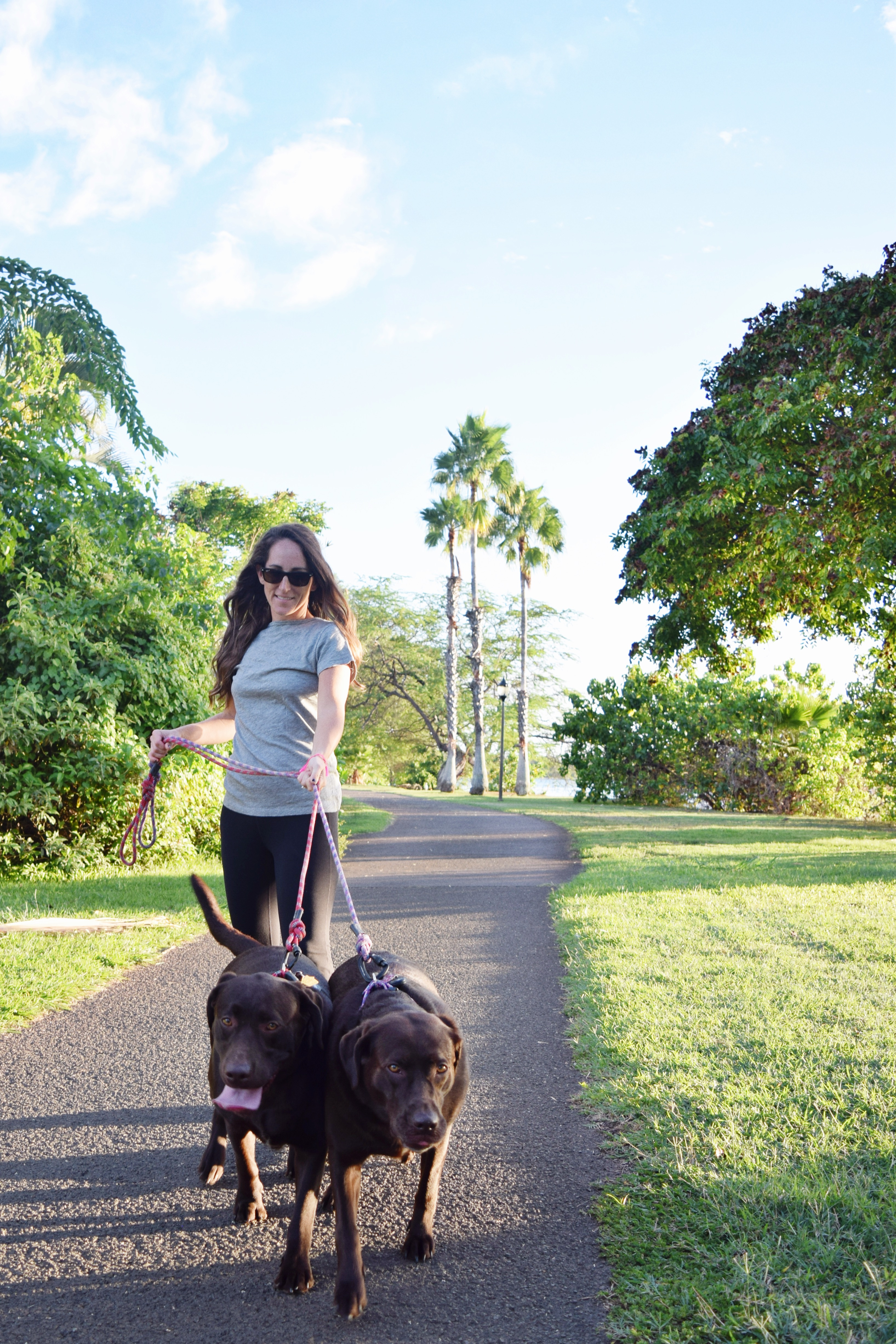 Keeping Your Pet Safe During Natural Disasters - Emergency Checklist For Pets - Communikait by Kait Hanson