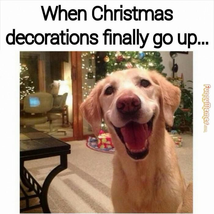 Christmas Decorations Meme - Communikait by Kait Hanson