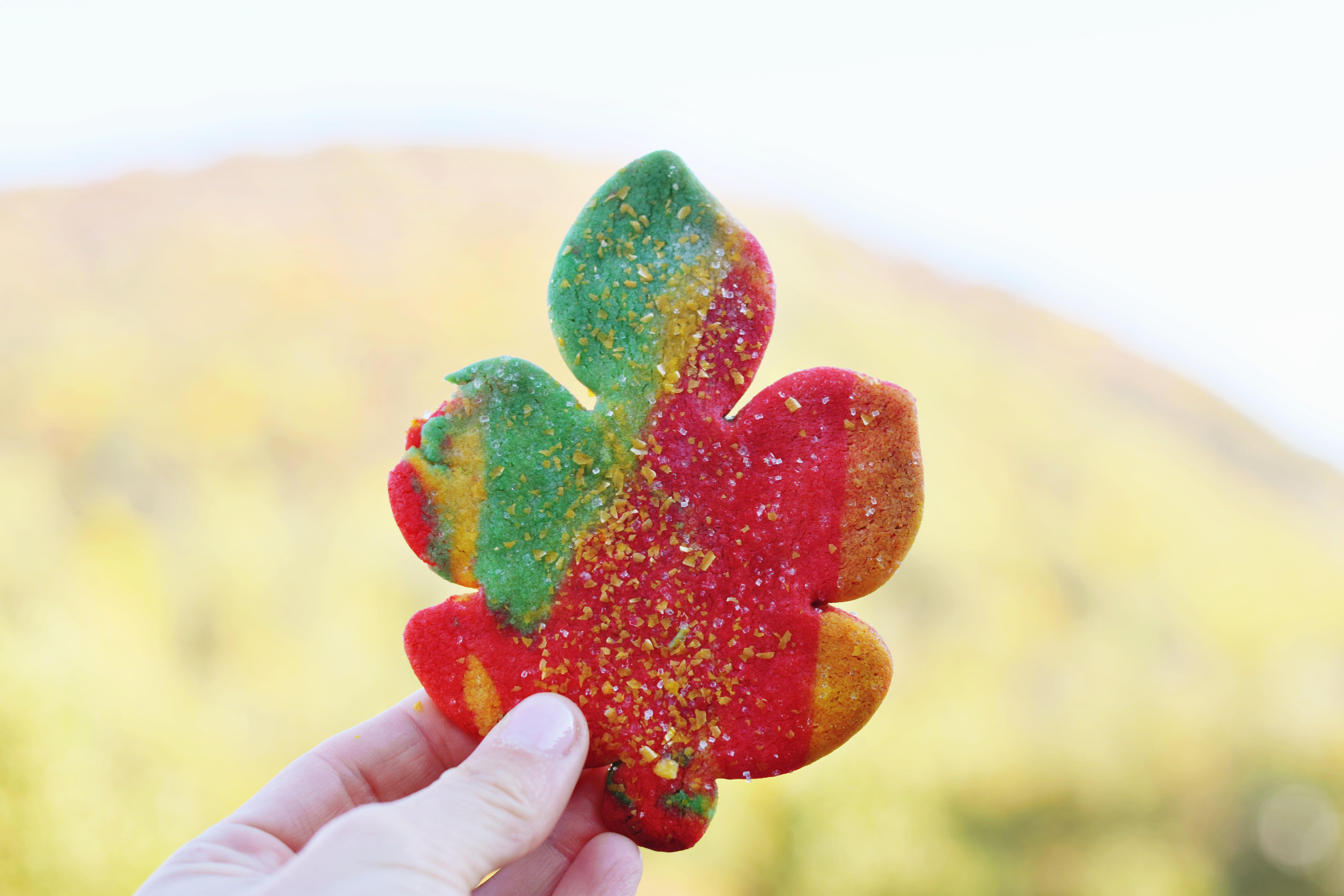 Fun Tie-Dye Fall Leaf Cookies that are perfect for any festive fall occasion! - Fall Cookie Recipe - Maple Leaf Cookies - Easy Fall Dessert Recipe - Easy Cookies For Fall - Communikait by Kait Hanson