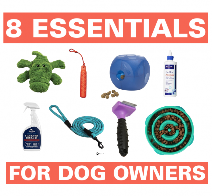 8 Essentials For Dog Owners