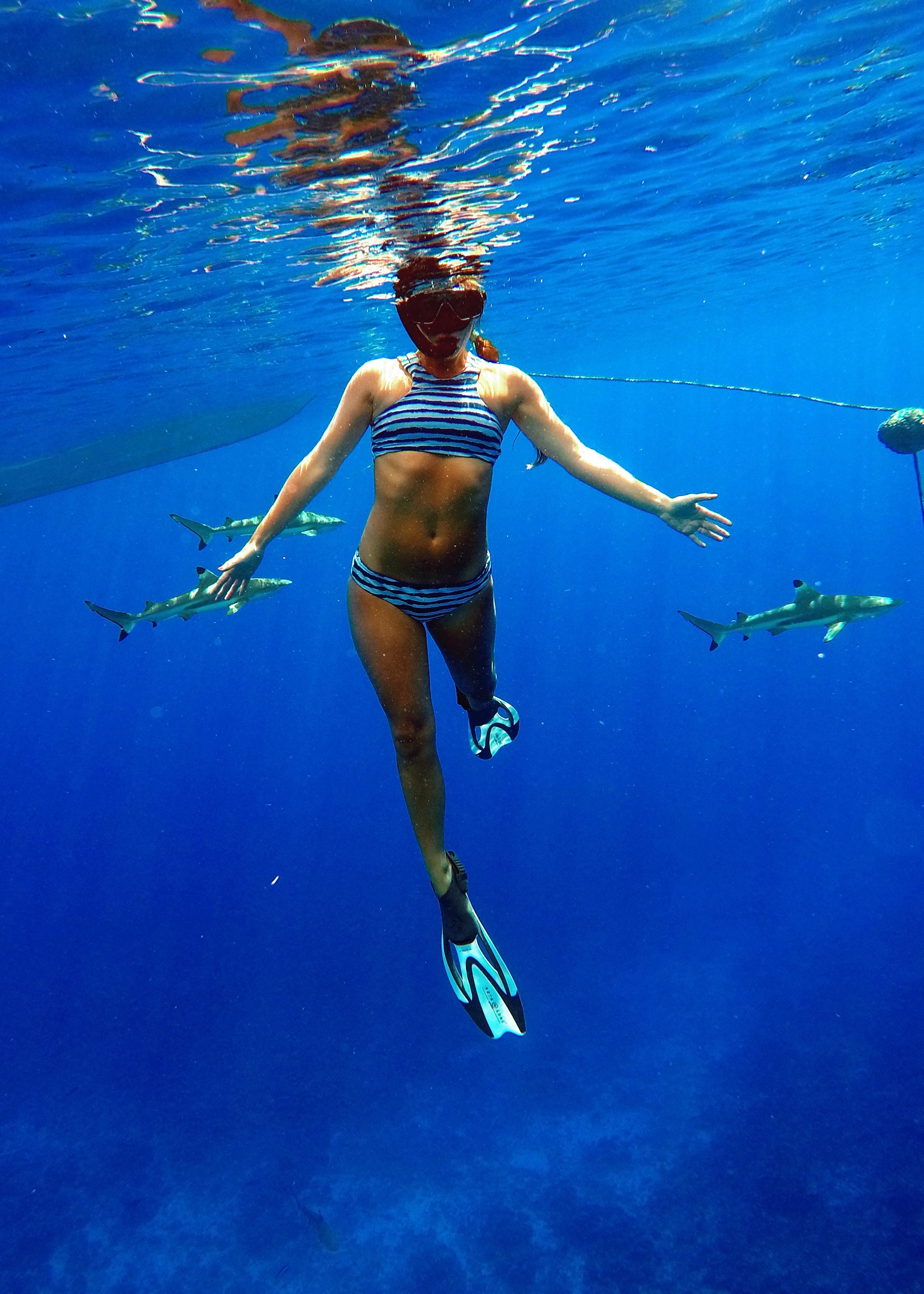 My Experience Swimming With Whales + Sharks - Freediving - Sharks in Tahiti - Diving In Tahiti - Diving With Sharks - Tahiti Trip - Bora Bora Honeymoon - Communikait by Kait Hanson