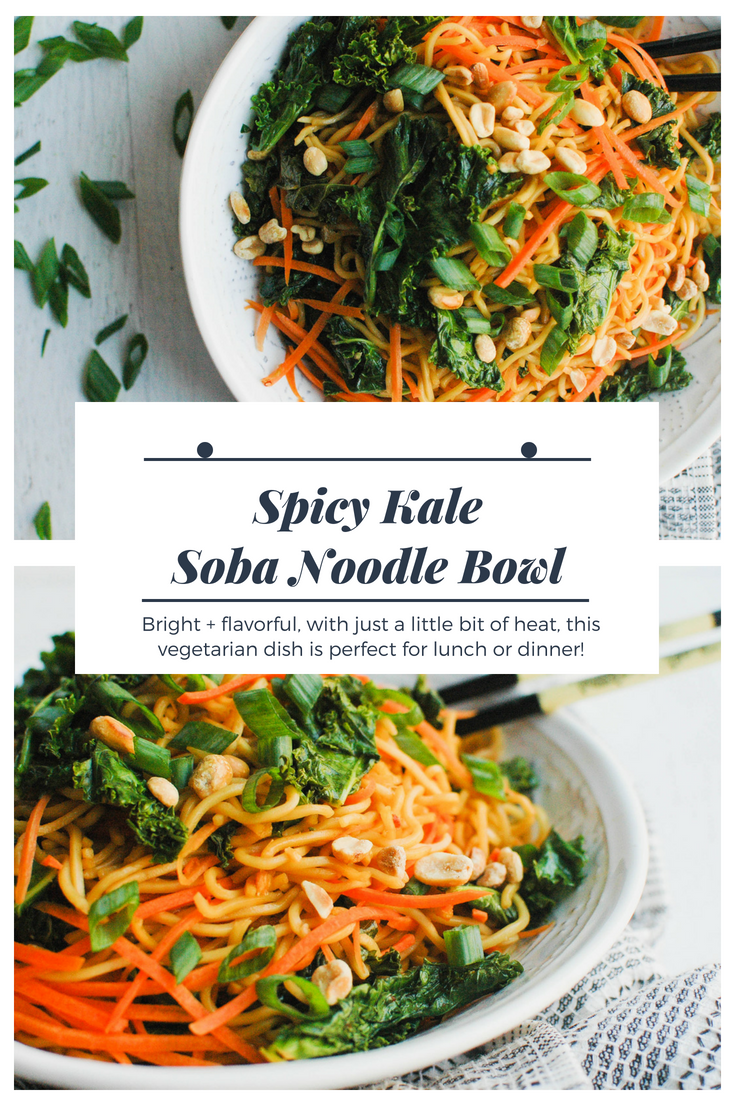 Spicy Kale Soba Noodle Bowl - Bright, flavorful, healthy, and just the right amount of heat, this vegetarian lunch or dinner recipe is sure to please! | Soba Bowl - Soba Noodle Bowl Recipe - Easy Soba Noodle Bowl Recipe - Soba Noodle Bowl - Vegetarian Recipe