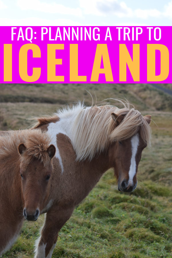 Frequently Asked Questions About Our Iceland Trip