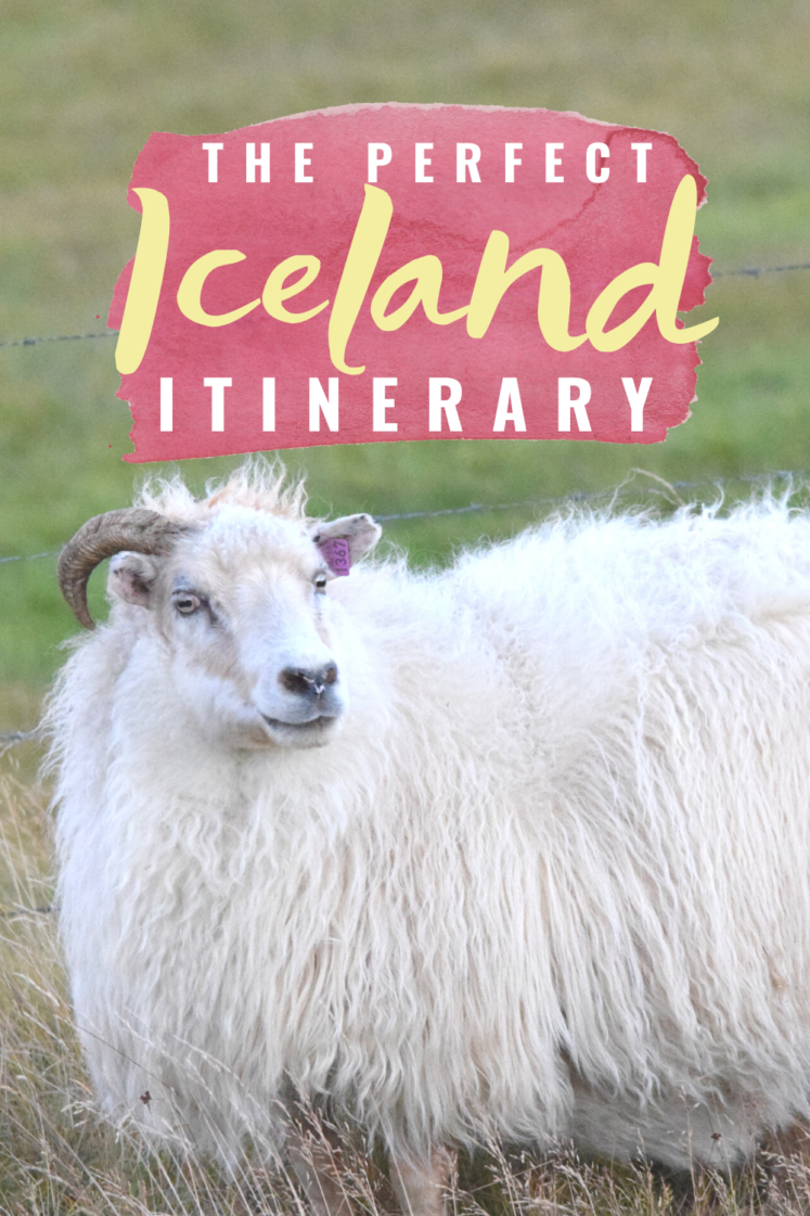 Iceland Itinerary + Overview Of Our Iceland Vacation