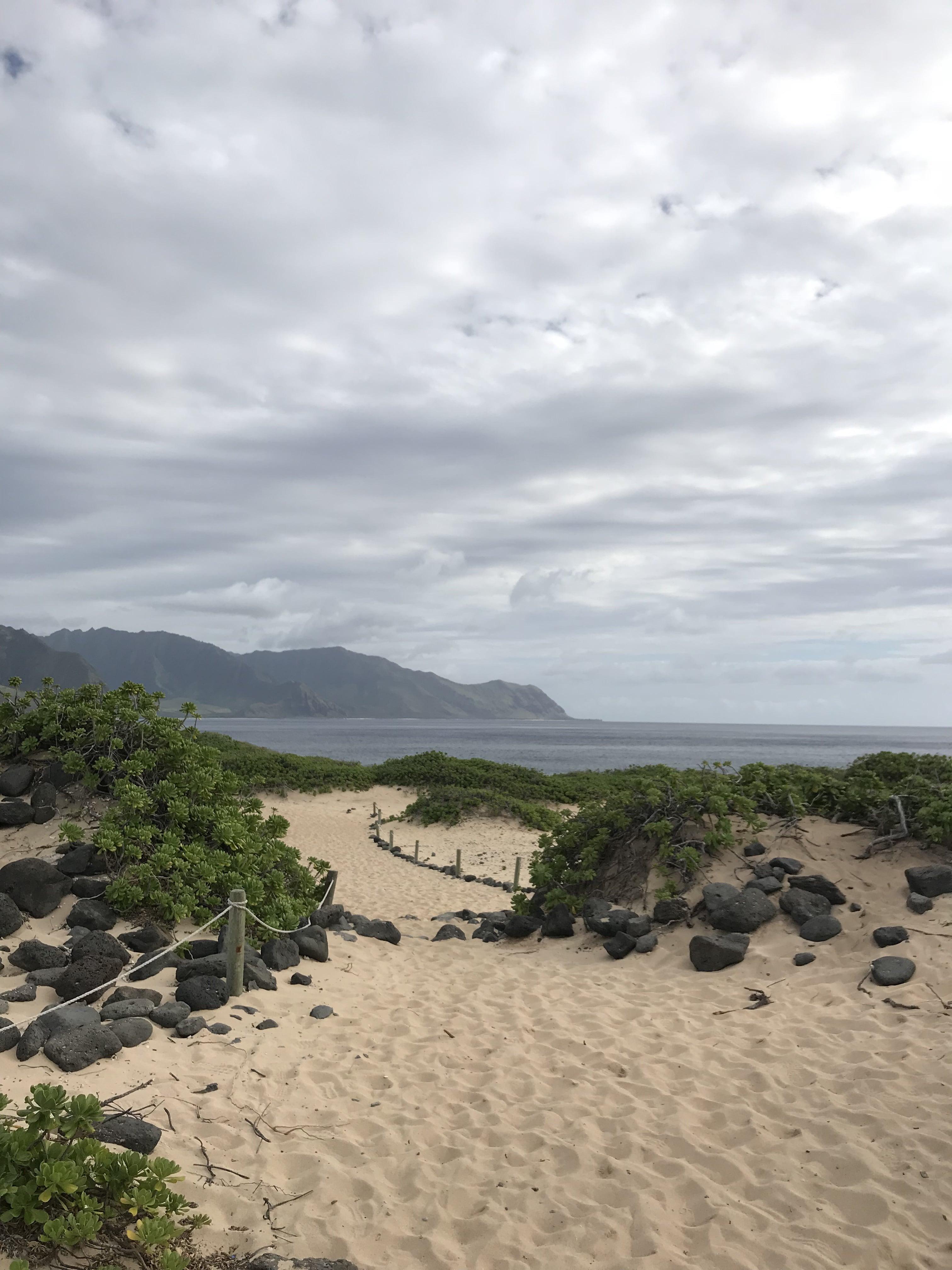 Hiking In Hawaii: Kaena Point - Kaena Point Hike - Kaena Point State Park - Kaena Point North Shore - Kaena Point West Side - Oahu Hikes - Easy Oahu Hikes - Kaena Point Easy Hike - Kaena Point Trail - Hawaiian Monk Seal - How Long Is Kaena Point Hike - Kaena Point Hike Oahu - #oahu #hawaii #travelblog