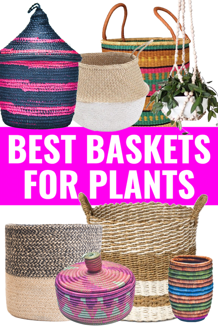 BEST PLANT BASKETS - Sharing the best types of baskets for your plants and design styles I love! - Plant Baskets - Baskets For Plants - Rattan Baskets - Sisal Baskets - Colorful Baskets - Woven Baskets - Natural Baskets - Seagrass Baskets - Hanging Baskets - Macrame Baskets - Belly Baskets #homedecor #baskets