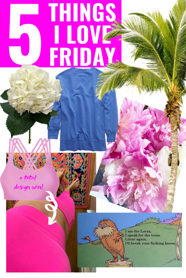 5 Things I Love Friday - Athleta Sports Bra - Aerie Sweatshirt - Lorax Meme - Hydrangea - Peonies