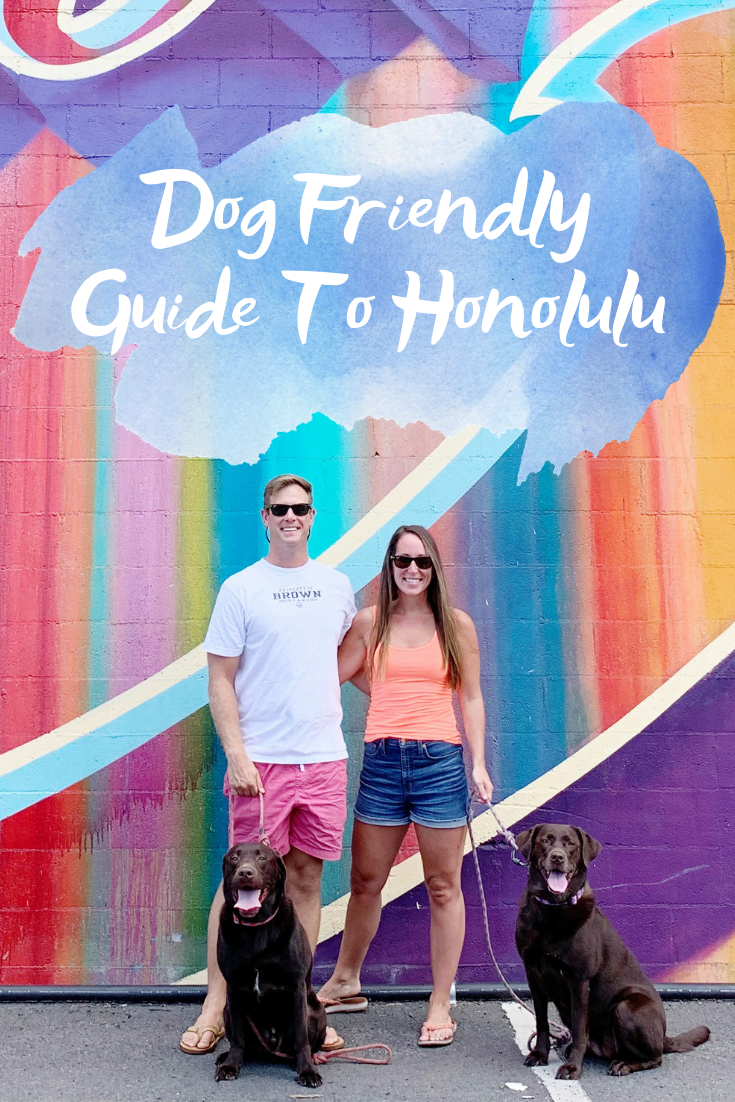 Dog Friendly Guide To Honolulu - Dog Friendly Guide Oahu - Dog Friendly places in Hawaii