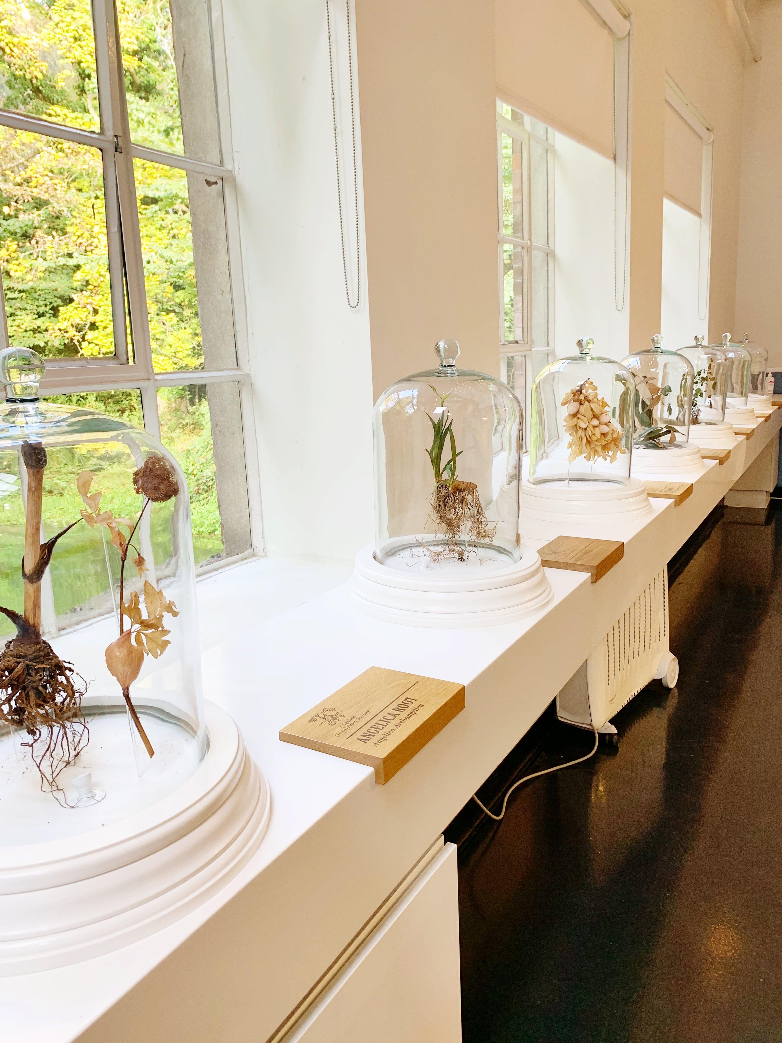 Botanical room at Bombay Sapphire