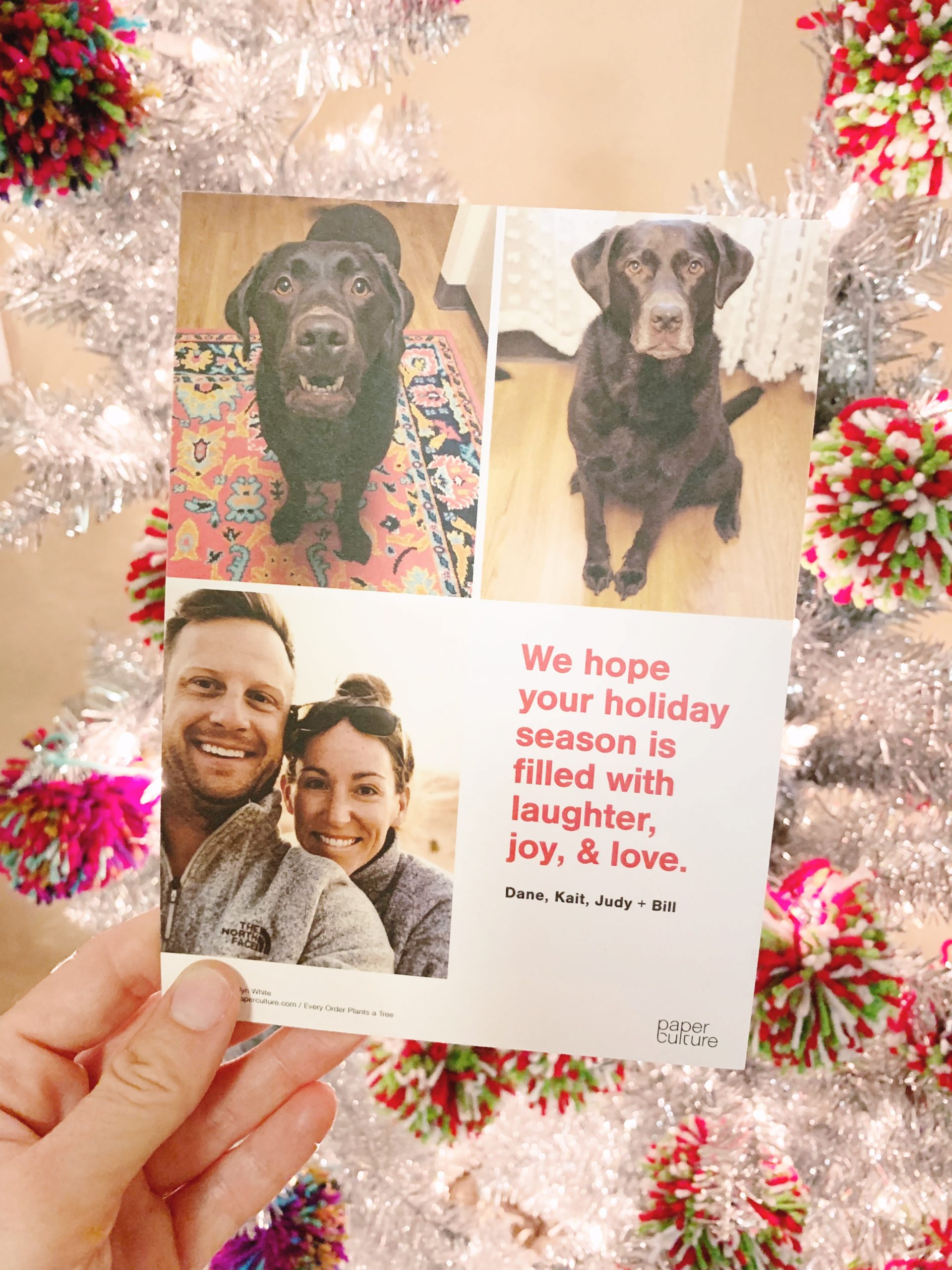 Our 2019 Christmas Card - Paper Culture Christmas Card