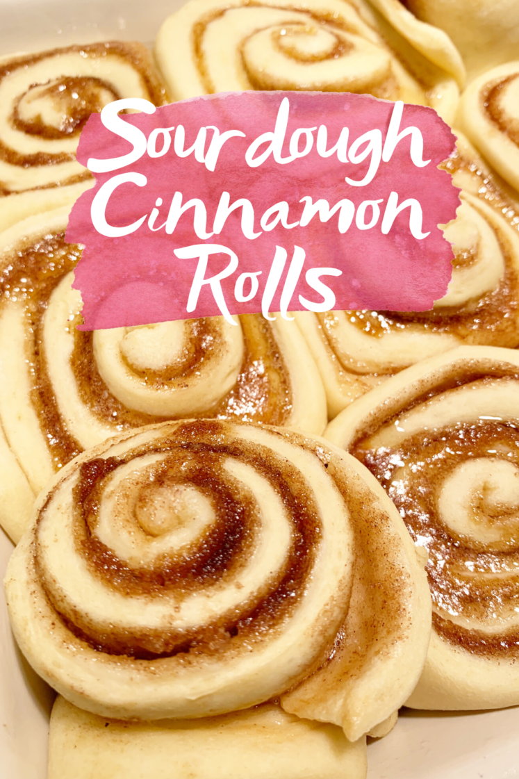 Easy Sourdough Cinnamon Rolls - An easy sourdough cinnamon rolls recipe using active sourdough starter discard instead of a yeast packet! | Sourdough Cinnamon Roll Recipe - Sourdough starter discard recipe - Homemade Sourdough Cinnamon Rolls