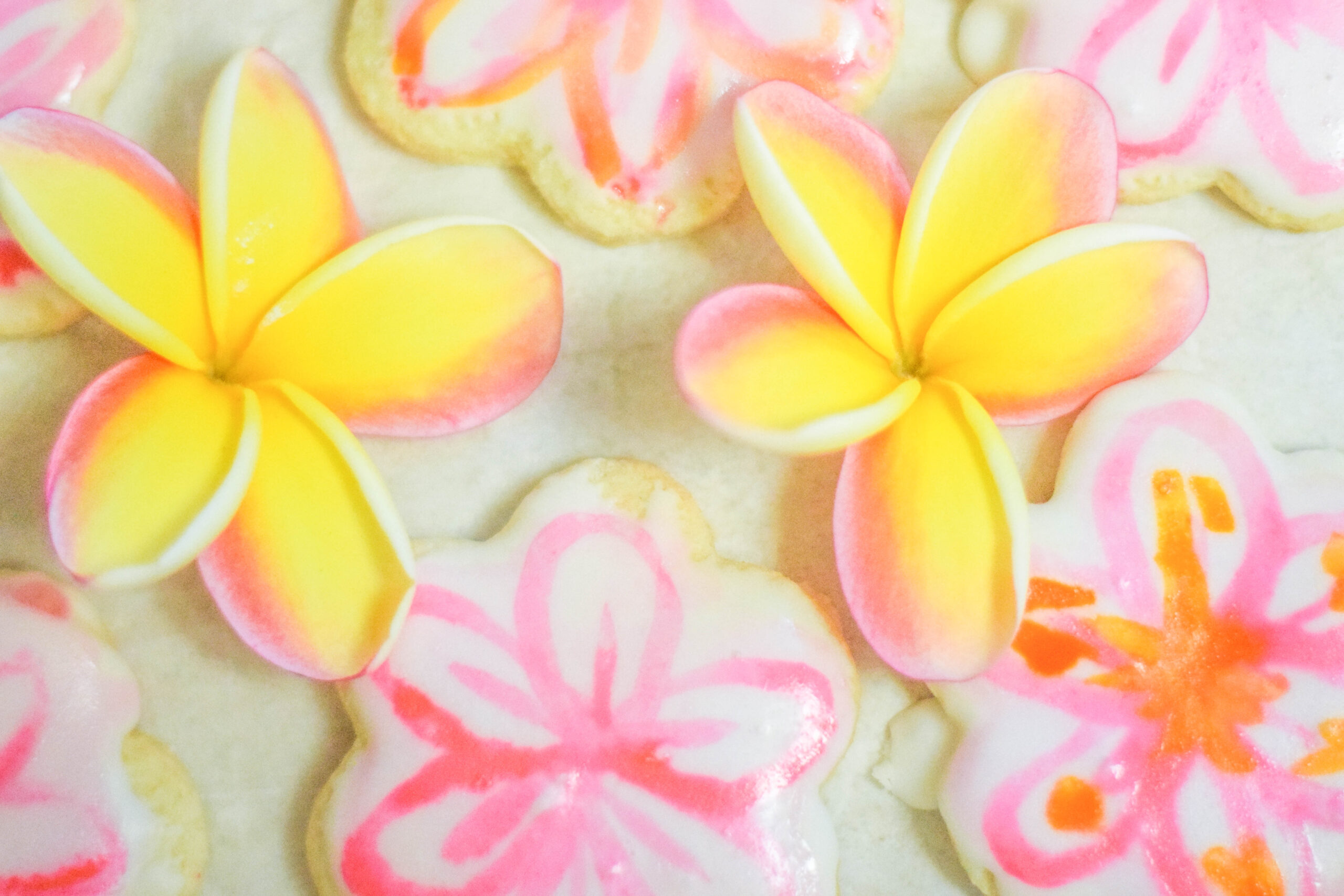 Pink and Yellow Plumeria Painted Cookies