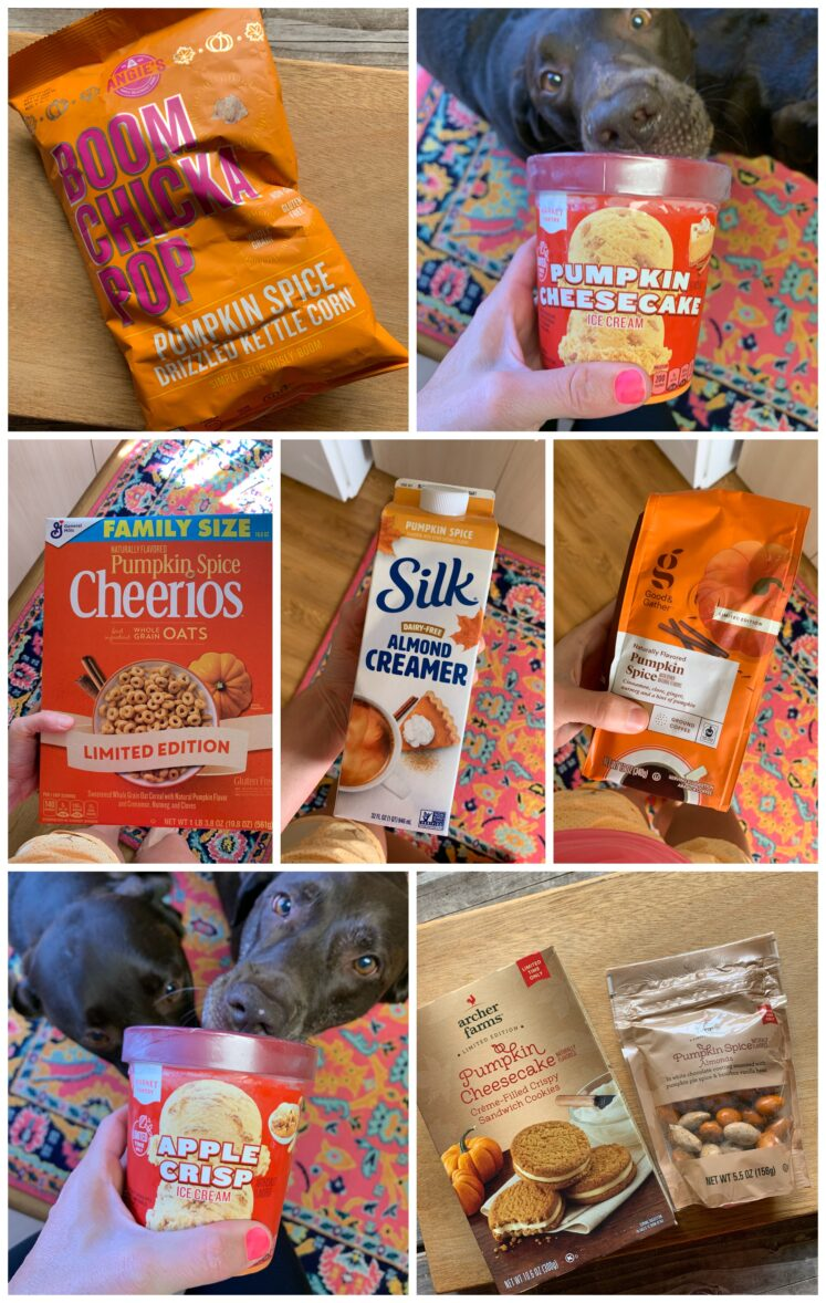 Fall Food From Target – What To Try + What To Skip