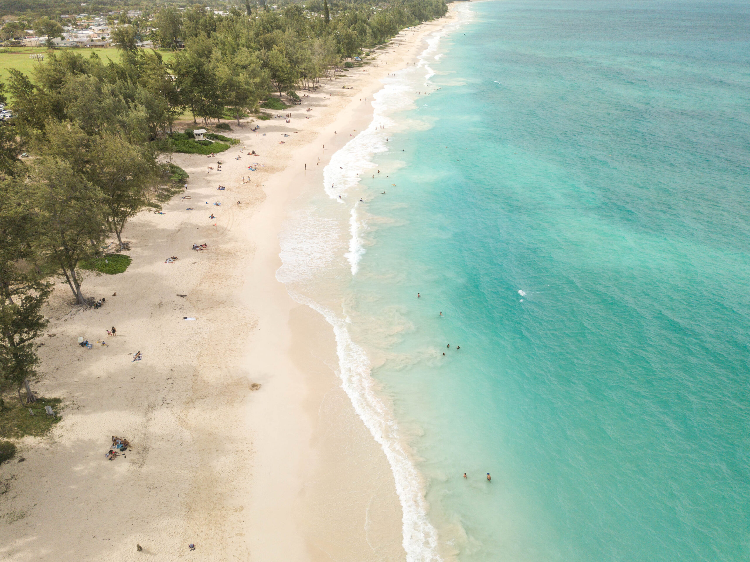 Aerial beach photograph of Waimanalo Beach - White sand with turquoise ocean and forest line