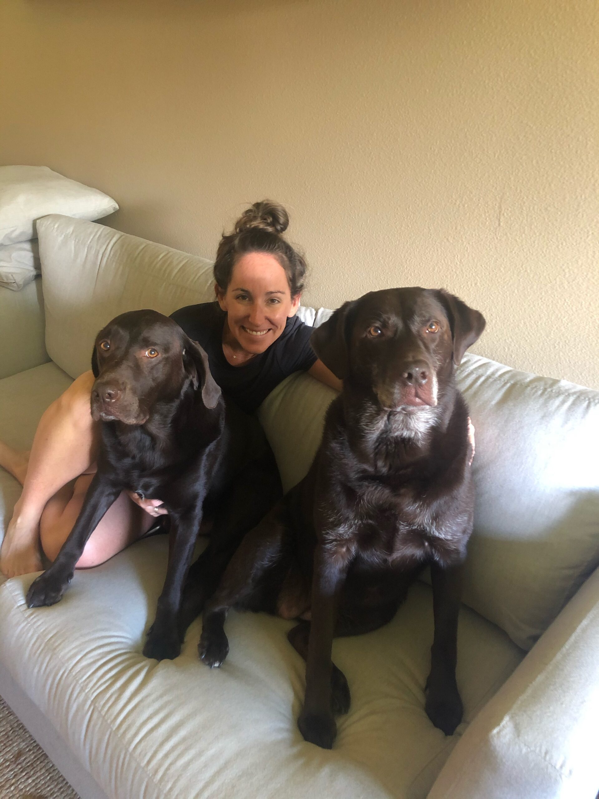 Woman sitting on a white couch with two chocolate Labradors